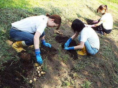農業体験 野菜、果物、米(田植え~収穫まで)など